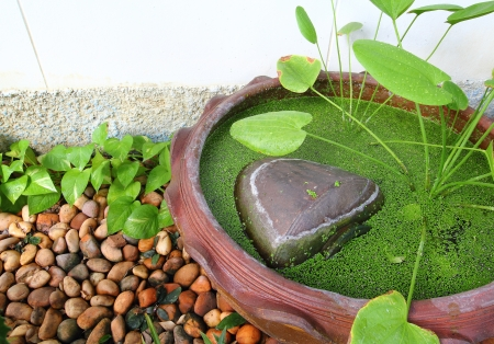 Small garden stone pond Standard-Bild