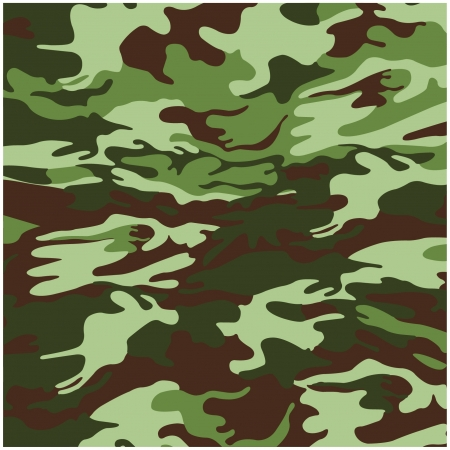 special forces: Military camouflage background
