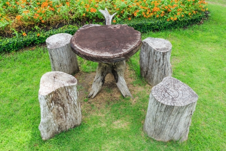 Table and chair in garden