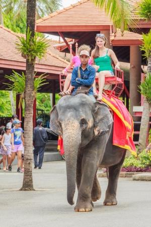 PATTAYA, Tailandia - el 03 de agosto Turistas mujeres y ni�as de 8-12 a�os de edad en un elefante ride tour de la Nongnooch Tropical Garden Resort el 3 de agosto de 2013 en Pattaya, Tailandia Editorial