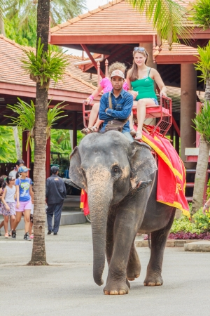 PATTAYA, THAILAND - AUGUST 3  Tourists women and girl 8-12 years old on an elephant ride tour of the Nongnooch Tropical Garden   Resort on August 3, 2013 in Pattaya,Thailand
