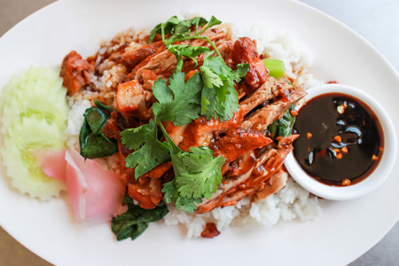 Rice with roast duck. BBQ Roast Duck over Rice