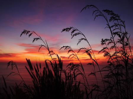 Sunset at Promthep cape,Thailand photo