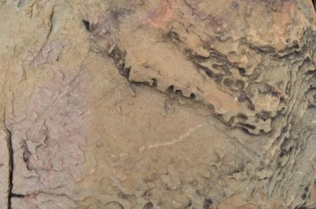 Stone wall Stock Photo - 15252334