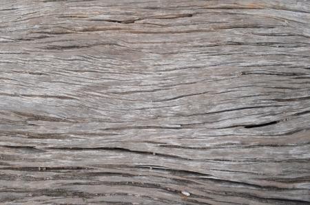 Wood wall Stock Photo - 15252332