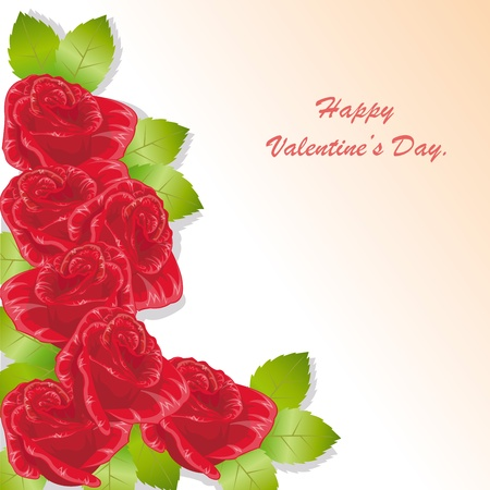 red rose valentine s day card Vector
