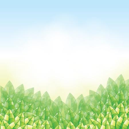 nature background in vector Stock Vector - 17899685