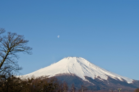 mountain Fuji under clear sky