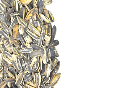 sunflower seeds on white background Stock Photo - 18847061