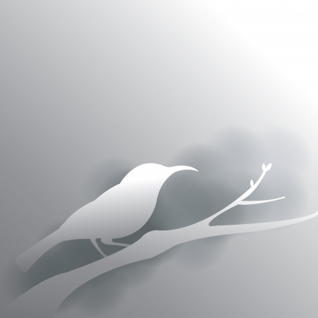 bird in grey background with shadow Vector