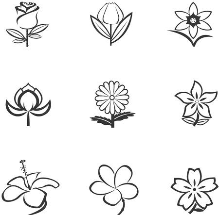 Icone di fiori Archivio Fotografico - 27552230