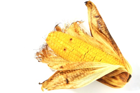 corn cob grilled between green leaves  photo