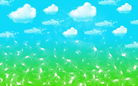 Abstract background clouds sky and flower white photo