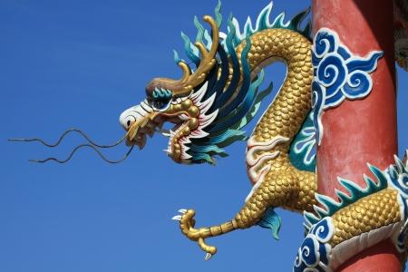 Dragon status photo