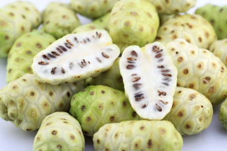 great morinda: Morinda citrifolia or noni  Stock Photo