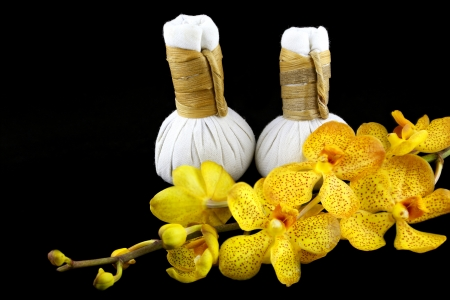 herbal compress balls for spa treatment and white orchid flowers Stock Photo - 17107146