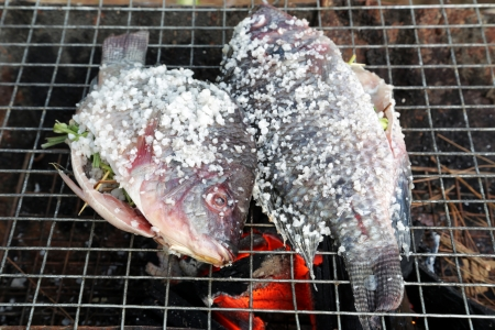 Grilling fish covered by salt on campfire  photo