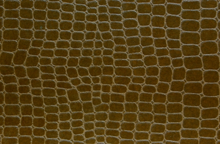 wallpaper color brown photo