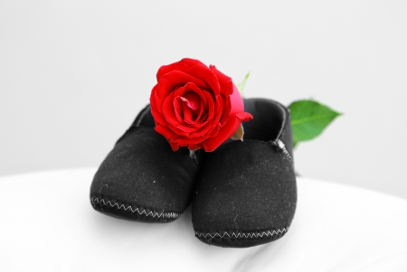 Baby shose with rose photo