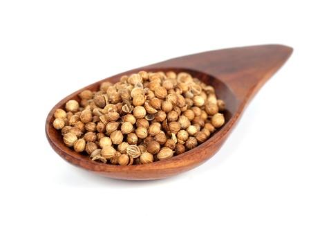 Heap coriander seeds in wooden spoon Stock Photo - 19788280