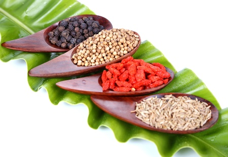 black seeds: Various kinds of spices - Coriander Seed, Goji Berry,Cumin,Black peppercorns with  ferns leaves