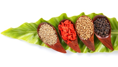 Various kinds of spices - Coriander Seed, Goji Berry,Cumin,Black peppercorns with  ferns leaves