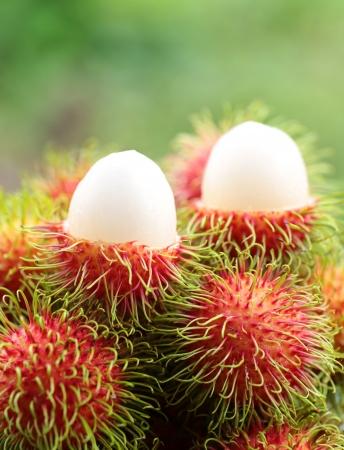 asian  fruit rambutan photo