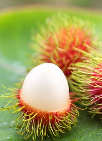asian  fruit rambutan from Thailand photo