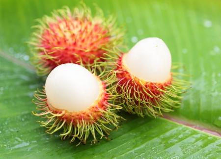 asian fruit rambutan on banana leaves photo
