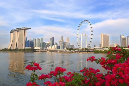 Singapore city skyline in the morning with Flowering bougainvillea foreground Stock Photo - 27589173