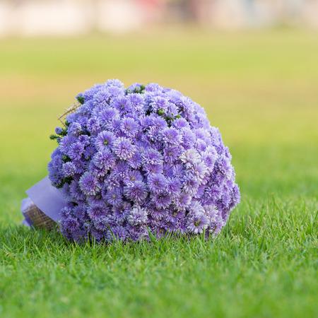 bouquet of flowers chrysanthemum color purple on gree grass floor