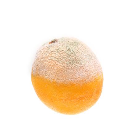 perishable: Orange with mold growth isolated on white background Stock Photo