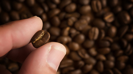 Cropped shot of a man's fingers holding freshly roastd aromatic coffee beans, can be used as a background Foto de archivo