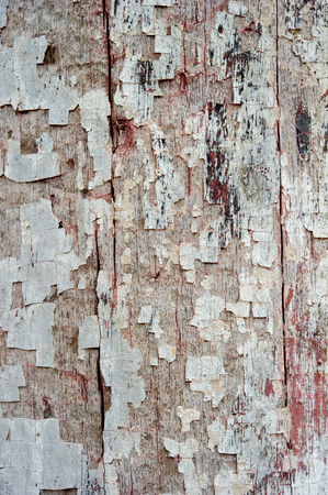 Old grunge red wood textures backgrounds. Can be use as background texture or wallpaper.