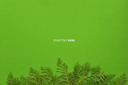Christmas background template with frame of fir branches in green color background. Flat lay, top view with copy space. Foto de archivo - 121399621