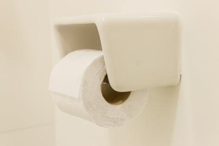 A roll of toilet paper in the bahtroom photo