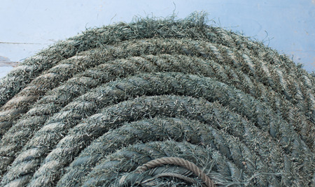 Green rope Coiled Up in Circles with Center Detail Horizontal photo