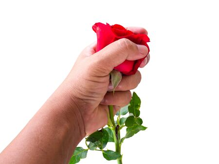 A woman holding a red rose in her hand, but she refused it..Valentines Concept