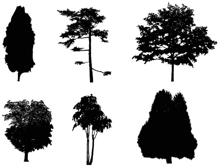 vectored: treesilhouettes 2 Illustration