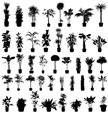 bud weed: plants silhouettes collection