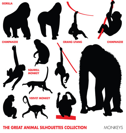 gibbon: the great animal silhouetes collection - monkeys