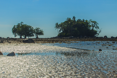 Lonely remote island with rock beach and tree when the sea water receded in blue sky and cloudy day background Stock Photo