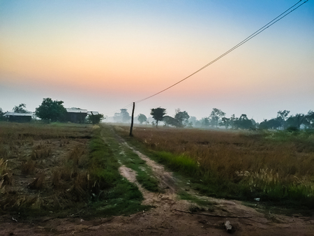 telegrama: The Rural Area in the Morning with sunrise background and foreground with electric cables. This is for the electricity and country development concept. Foto de archivo