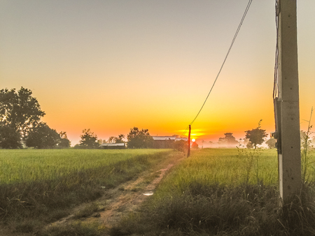 The Rural Area in the Morning with sunrise background and foreground with electric cables. This is for the electricity and country development concept. Foto de archivo