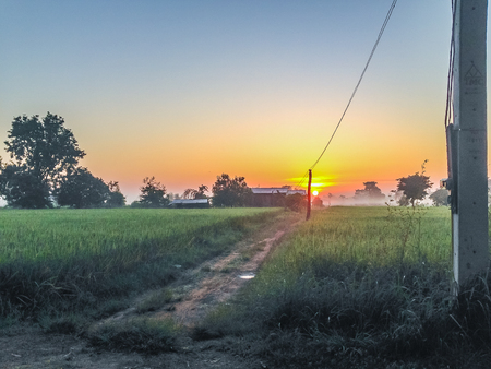 telegrama: The Rural Area in the Morning with sunrise background and foreground with electric cables. This is for the electricity and country development concept. Editorial