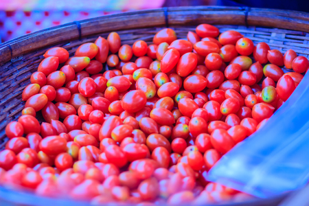 Fresh Sweet Cherry Tomatoes (Solanum lycopersicum L. var. cerasiforme ), small tomatoes, sweet taste, texture and smell different and contain beta - carotene, vitamin C and vitamin E are high. Stock Photo