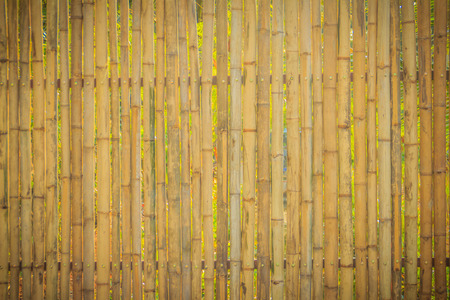 nails: Abstract yellow dried bamboo boundary wall fence texture, bamboo wall background.