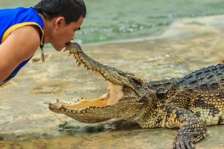 Nakhon Pathom, Thailand - May 18, 2017: Risky crocodile shows at Samphran Crocodile Farm, one of the most impressive public crocodile shows in the world.