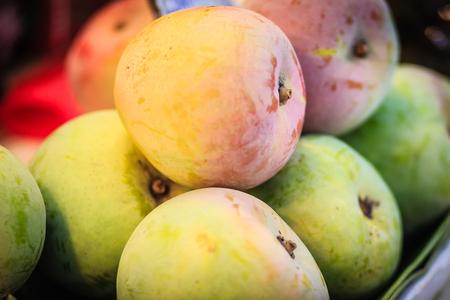 과일 시장에서 판매되는 유기농 R2E2 망고의 특대 점포. 행 2 실험 2, R2E2 사과 망고는 화려하고 맛있는 망고로 수출용입니다.