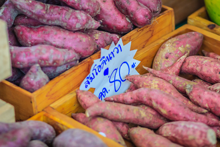 Organic Japanese sweet potatoes for sale at the local fresh market with price tag. Roasted sweet potato is a popular winter street food in East Asia. Purple and yellow sweet potatoes on sale.